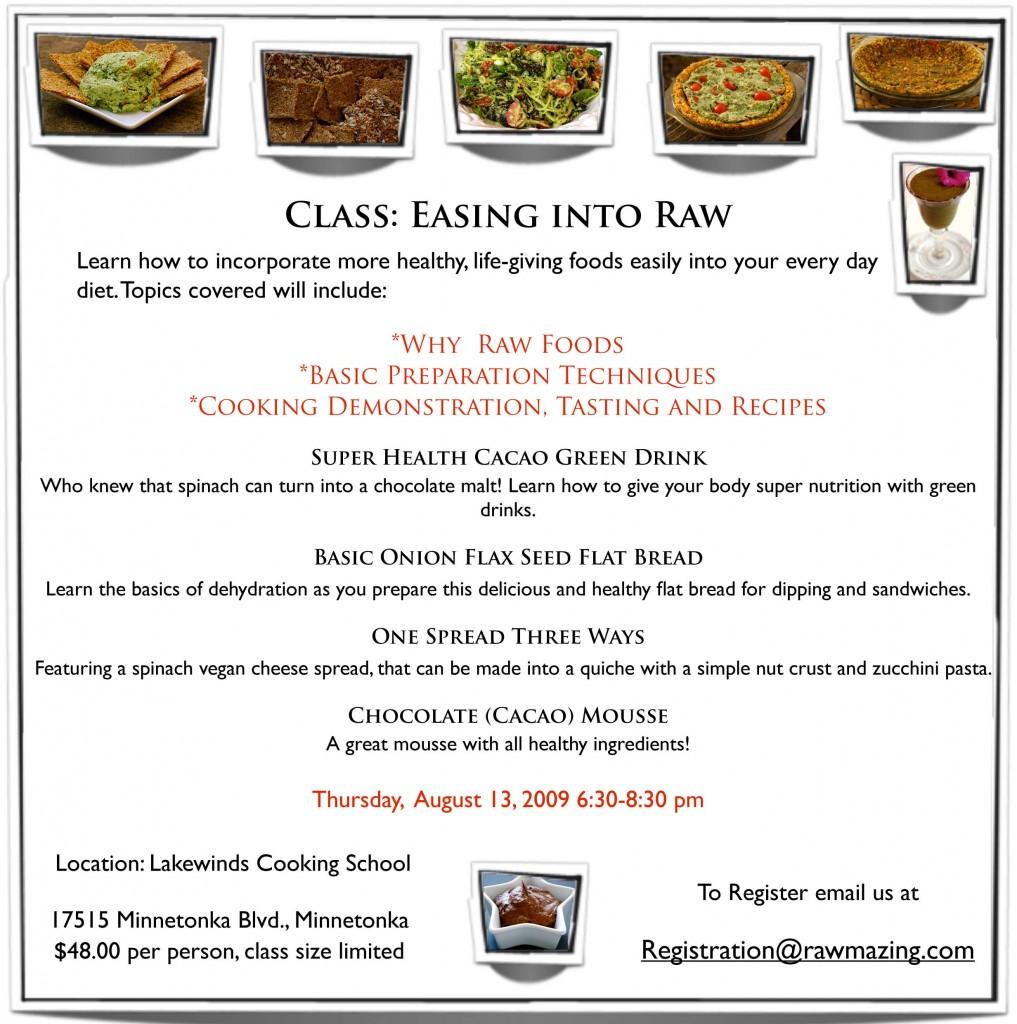 class 1 flyer online
