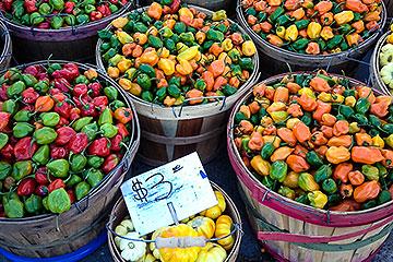 Minneapolis Farmer's Market